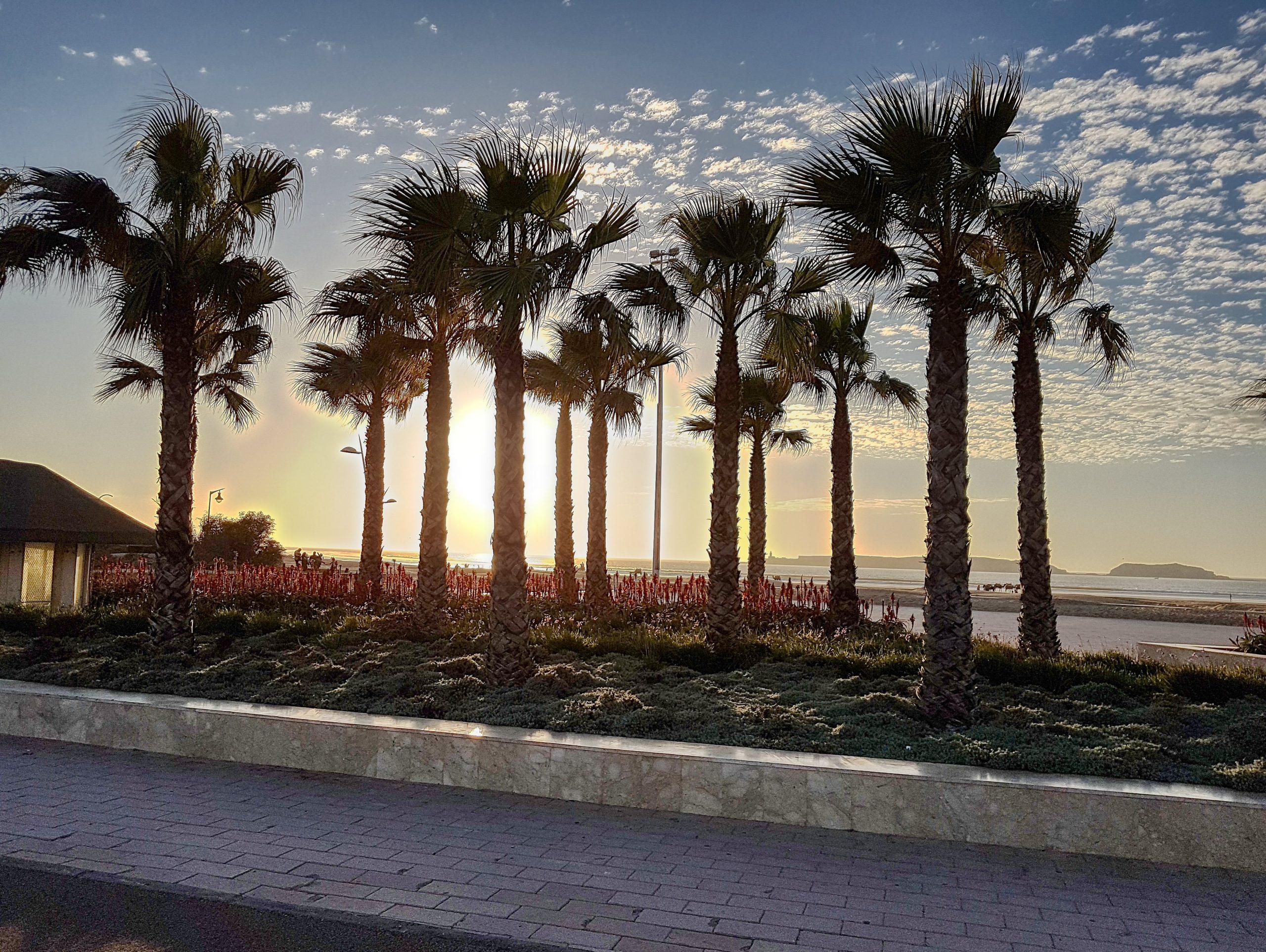 Essaouira am Strand